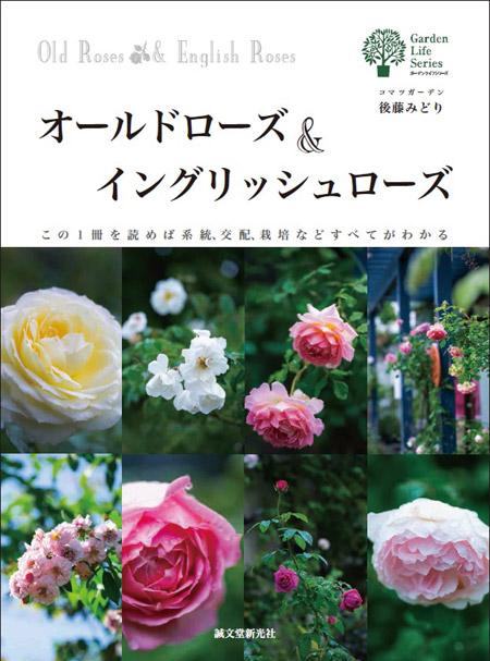 cover_photo.jpg