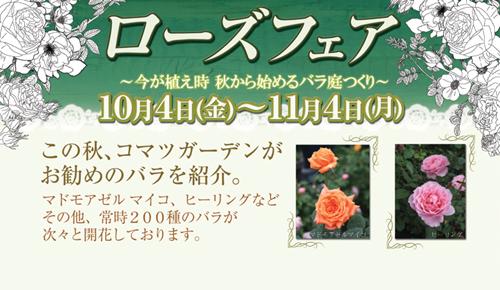rosefair2013title.jpg